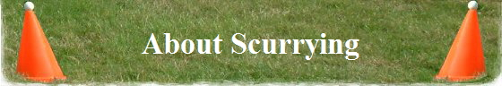 About Scurrying